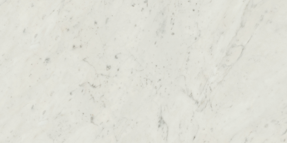 Specialty Tile Products Marmol Carrara